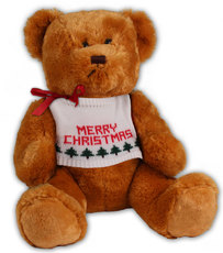 Personalized Christmas Holiday Teddy Bear